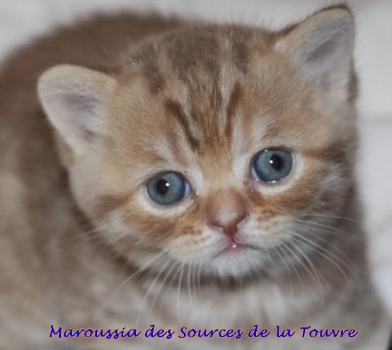 Maroussia à 1 mois